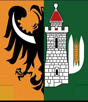 Gmina Lubin